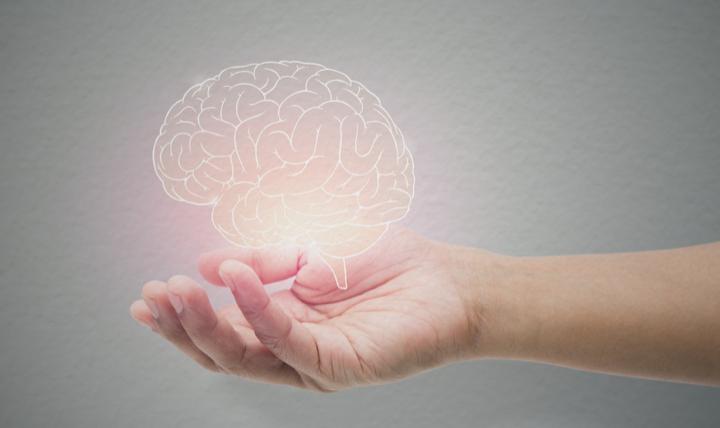hand holding brain